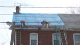 New Roof Installation (Architectural) - Before